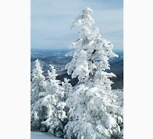 View From Mt. Killington Unisex T-Shirt
