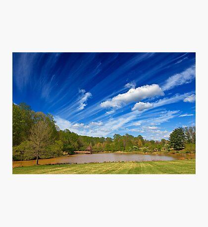 Meadowlark Gardens Photographic Print