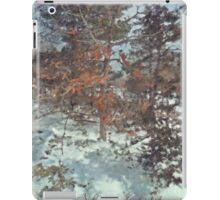 Beautiful Branches - Merry Christmas iPad Case/Skin