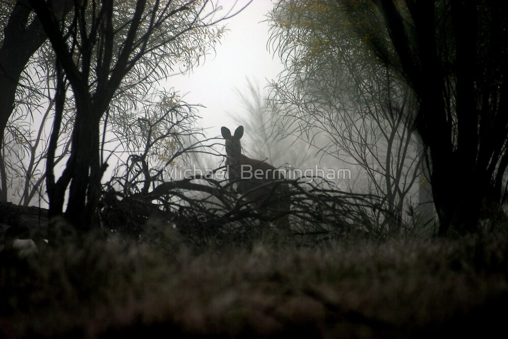 I see you... by Michael  Bermingham