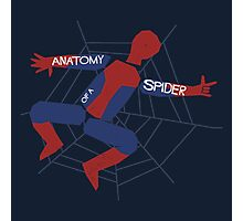 Anatomy of a Spider Photographic Print