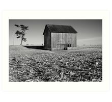 Rural Indiana #32 Art Print