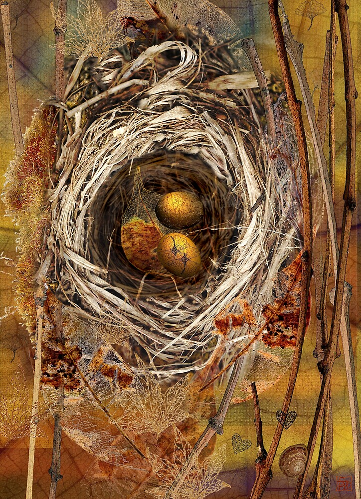 Nest by Sabine Spiesser