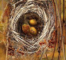 Nest by Sabine Spiesser
