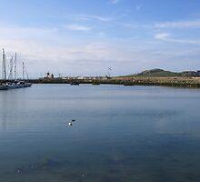 Howt Harbour, Dublin by bejelith