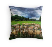 Staring Sheep Throw Pillow