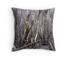 Paperbarks at Bunbury Swamp Throw Pillow