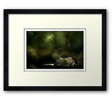 Taggerty River III Framed Print