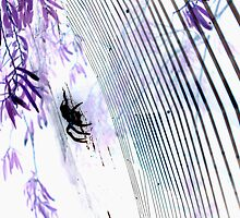 inverted spider in web by yellowcar9