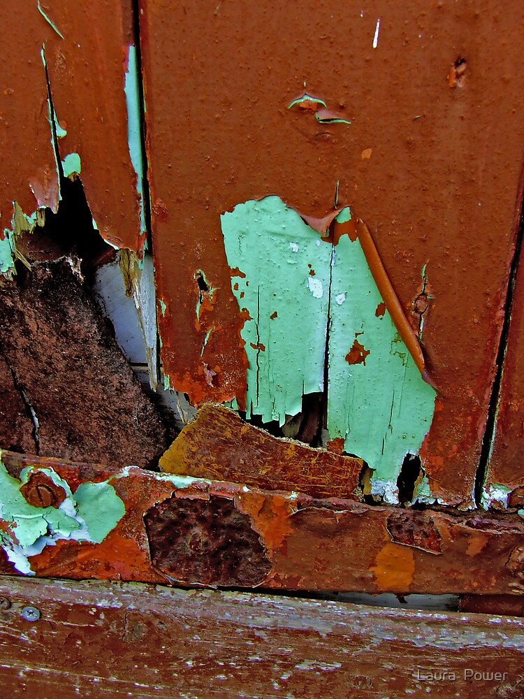 decay at the door by Laura  Power