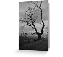 against sky Greeting Card