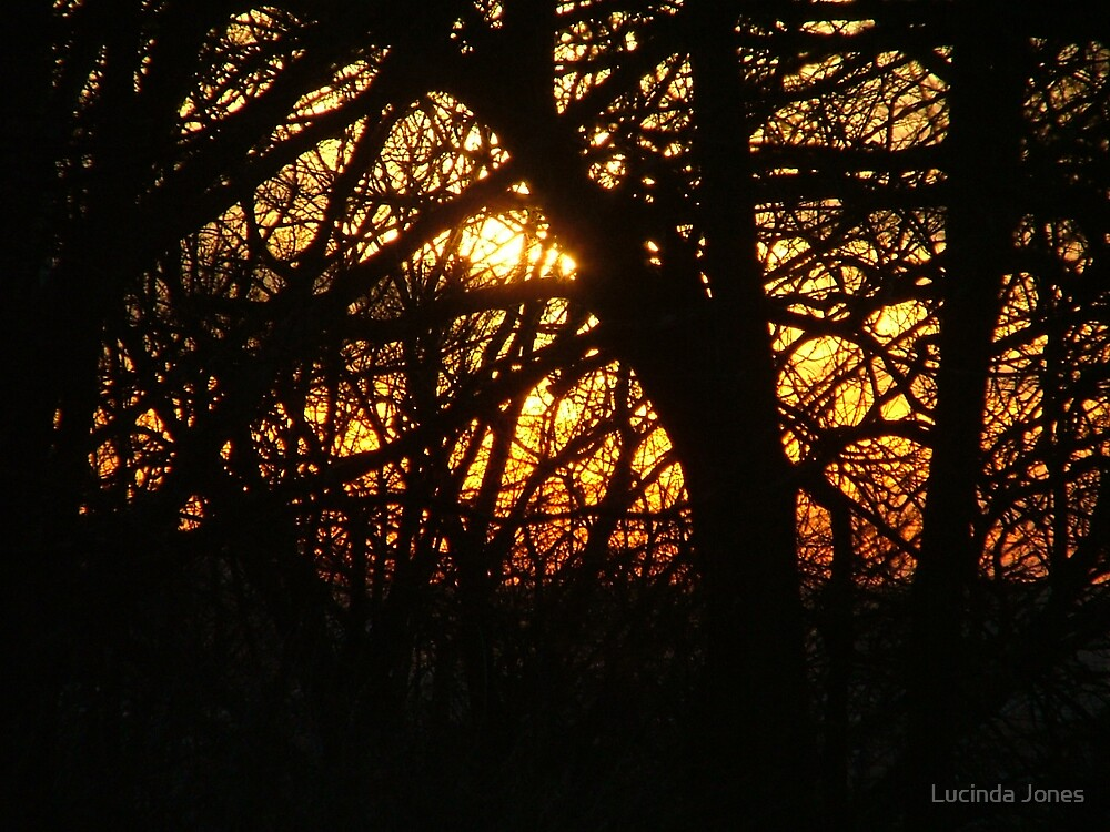 SunRise by Lucinda Jones