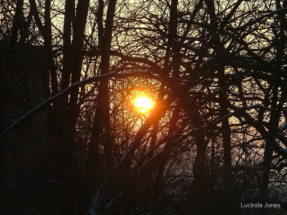 Rising Sun by Lucinda Jones