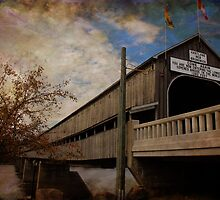 The Longest Covered Bridge In the World by Vickie Emms