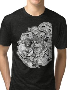 Insanity of Life Tri-blend T-Shirt