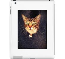 Lily the Cat iPad Case/Skin
