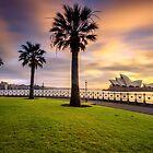 Opera House and Palm Trees by Arfan Habib