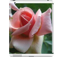 in softness iPad Case/Skin