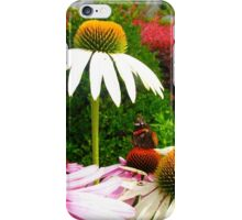 Resting comfortably iPhone Case/Skin