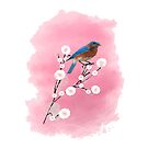 Bluebird on Blossom by Catherine Hamilton-Veal  ©