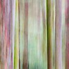 Tief, Im Wald by metriognome