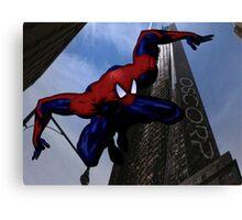 The Amazing Spiderman Canvas Print