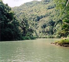 Loboc River - Bohol, Philippines by Robert Phelps