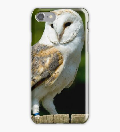 Barn owl standing on a post. iPhone Case/Skin