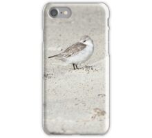 Western Sandpipers on a Windy Day iPhone Case/Skin