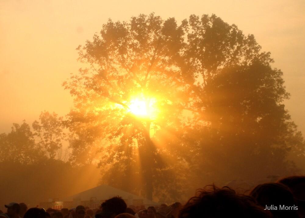 TN Sunshine by Julia Morris