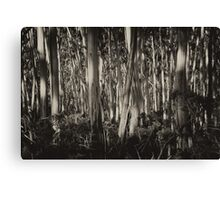 Mountain Ash Trees Canvas Print