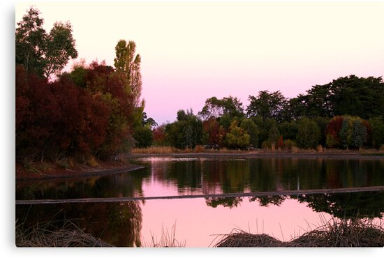 Laratinga Wetlands by gypsygirl