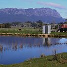 Australia - Tasmania, Mt Roland by photoj
