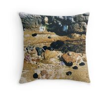 Rockpools 15 Throw Pillow