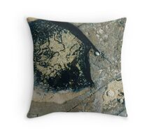 Rockpools 20 Throw Pillow