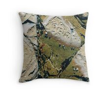Rockpools 24 Throw Pillow