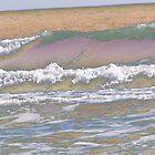 Colorful Sea by brinadragonfly