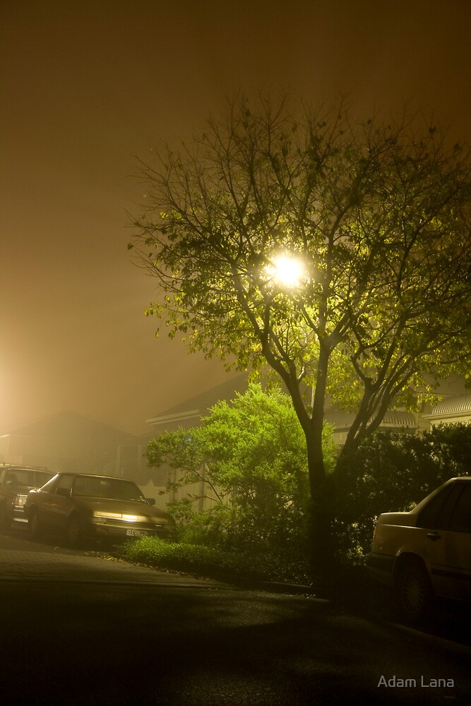 Foggy Nights 02 by Adam Lana