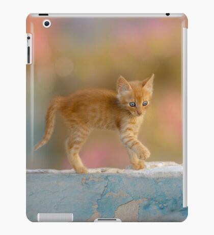 Cute Funny Drolly Ginger Cat Kitten iPad Case/Skin