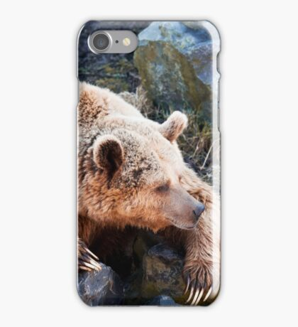Ursus Arctos  iPhone Case/Skin