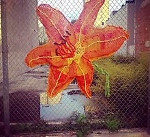 Yarn Art Flower in East Harlem, New York City by dearmoon