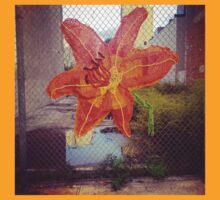 Yarn Art Flower in East Harlem, New York City T-Shirt