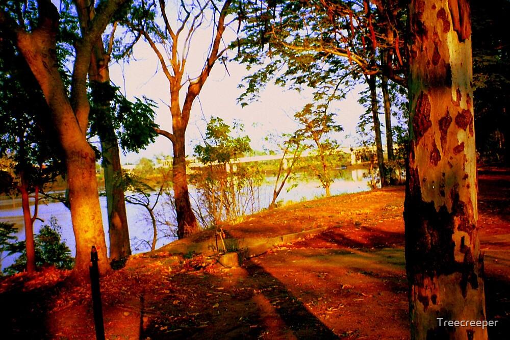 Riverbank by Treecreeper
