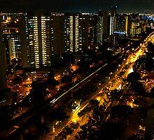 towards Jurong from Bukit Batok, Singapore by Leone Fabre