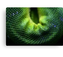 Snake Scales Canvas Print