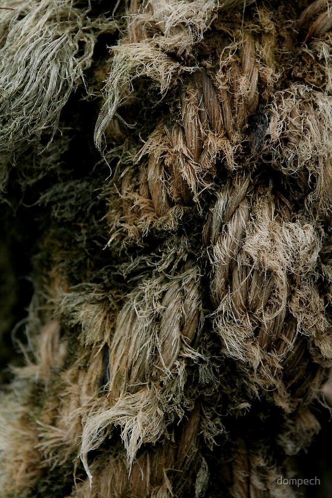 Old rope by dompech