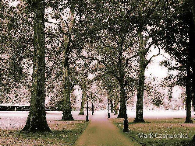 Lonely Path by Mark Czerwonka