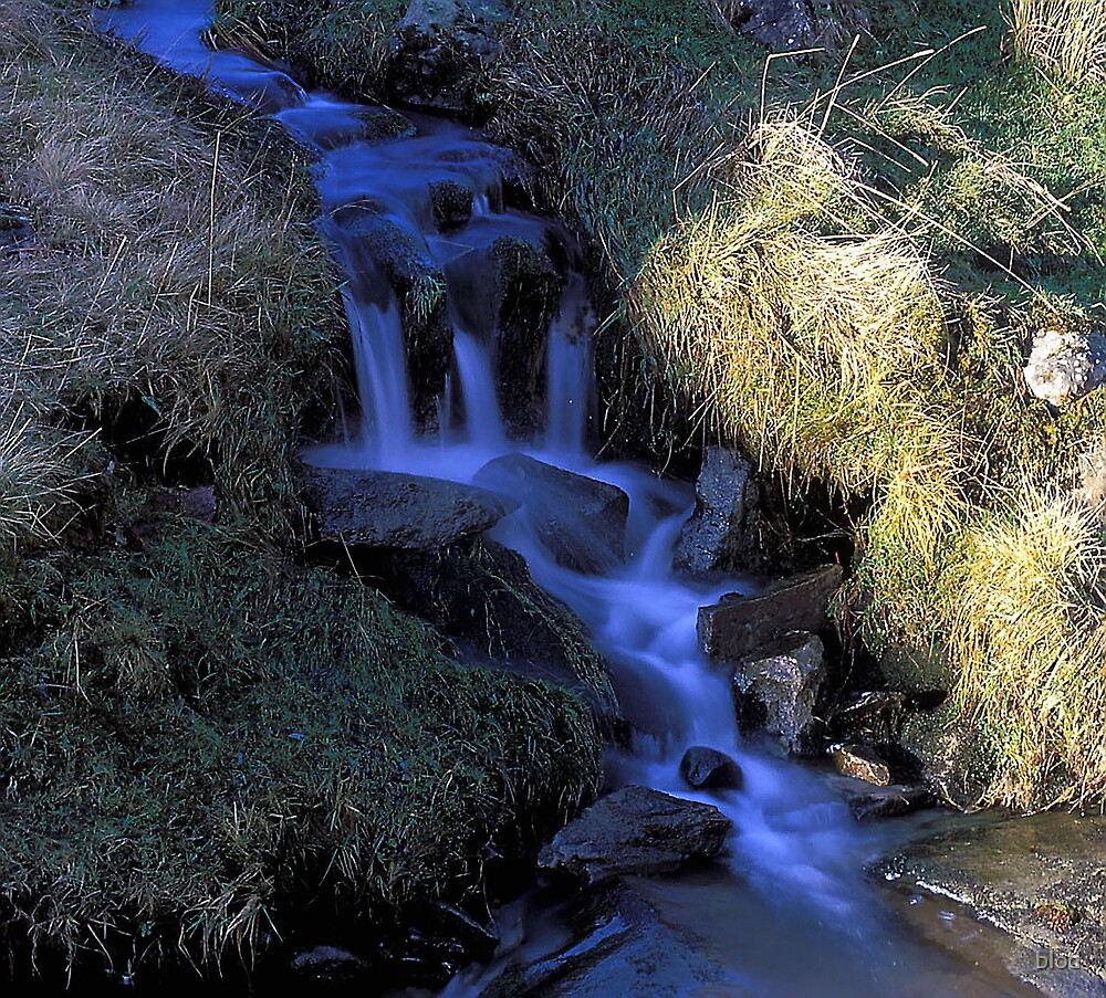 Sunny side of the Stream by blod
