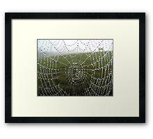diamonds on a web Framed Print