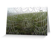 diamonds on a web Greeting Card
